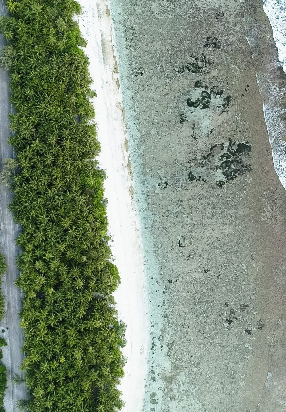 An aerial shot of the beach with the waves from the sea and the jungle of Maldives